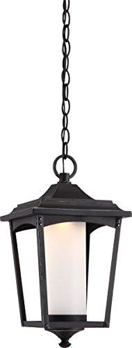 Nuvo Lighting One Light Nuvo 62/824 LED Outdoor Hanging Lantern ()
