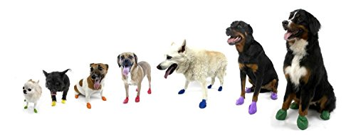 Pawz Dog Boots - Small - Black 12 Pack - Small Dog Rubber Boots