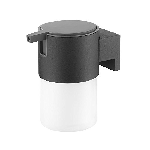 Tiger Soap Dispenser Bold Frosted Glass And Black Metal