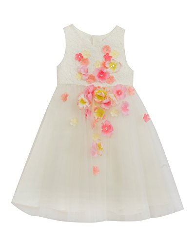 Girls Rare Editions (Rare Editions Little Girls' Floral Special Occasion Dress, Ivory, 2T)
