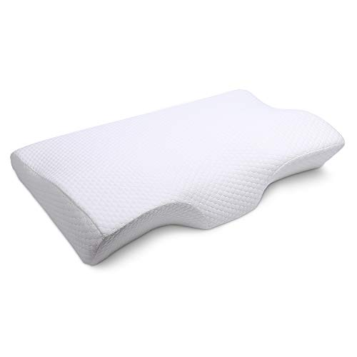 EARTH MIRACLE Memory Foam Pillow, Contour Ergonomic Bed Pillows for Sleeping, Orthopedic Cervical Pillow for Neck Pain with Free Zippered Bamboo Fiber Pillow Case (Best Pillow On Earth)