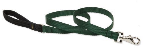 LupinePet Basics 3/4 Green 6-foot Padded Handle Leash for Medium and Larger Dogs