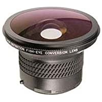 Raynox DCR-FE181PRO 0.24x 180-degree HD Diagonal Fisheye Conversion Lens