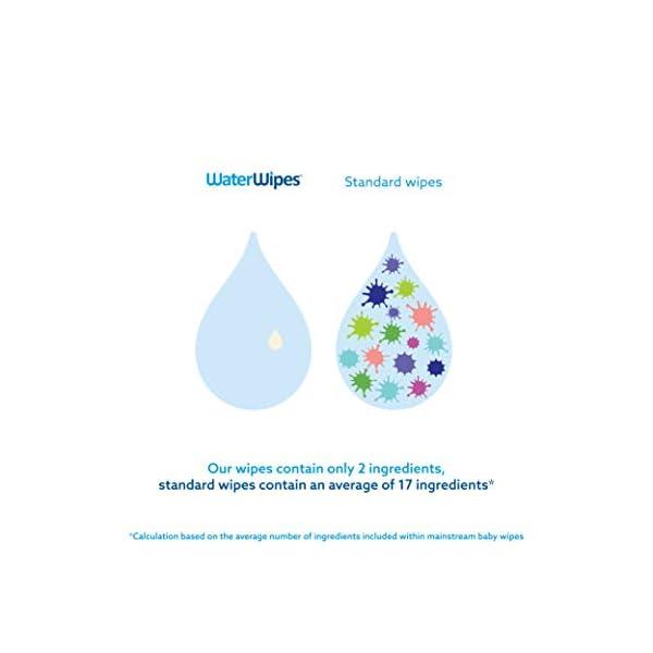 WaterWipes Salviettine Umidificate per la pelle sensibile dei bambini, 99,9% di acqua purificata, 12 Confezioni da 60 3