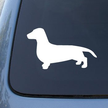 (DACHSHUND SMOOTH SILHOUETTE - Dog - Decal Sticker #1504   Vinyl Color: White)
