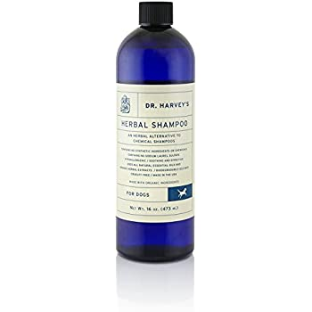 Legger Certified Organic All Natural Dog Shampoo