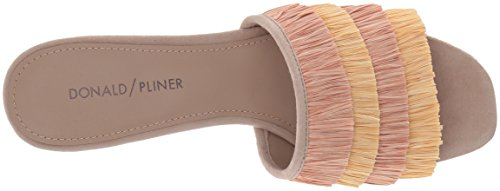 Donald J Pliner Women's Reise Slide Sandal, Red, Red Rose Multi
