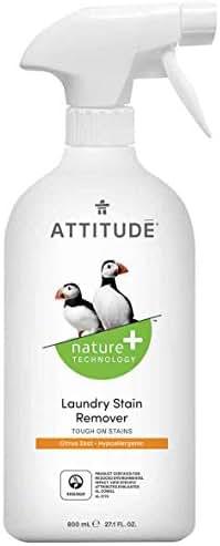 Stain Removers: Attitude