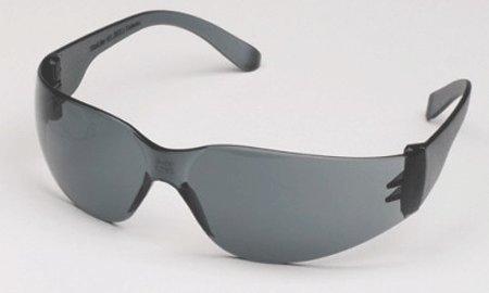 Palmero Sales Co Inc 3601G Pro-Vision Econo Wrap Eyewear Gray Lens - And Eyewear Co