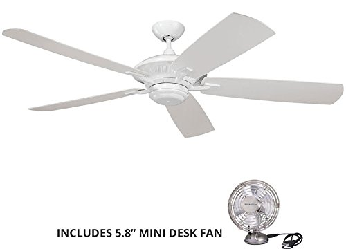 60 inch outdoor ceiling fans - 5