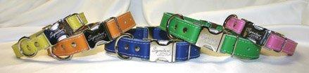 OmniPet 6109-JD Kwik-Klip Signature Leather Adjustable Dog Collar, Jade, 12-16