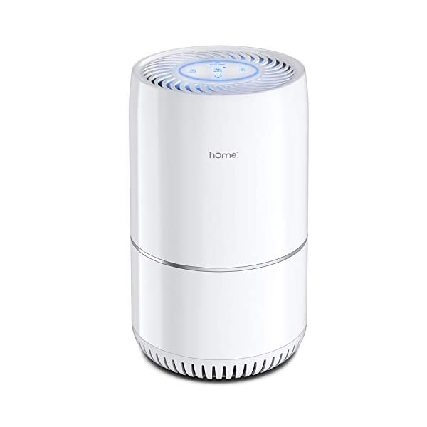 hOmeLabs Air Purifier for Home, Bedroom or Office – True HEPA H13 Filter to...