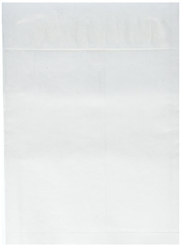 White Expansion Envelopes Plain End (Sparco Tyvek Open-End Envelopes, Plain, 10 x 13 x 1-1/2 Inches, 100 Count, White (SPR19807))