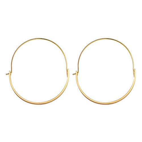 Big Round Earrings, Fashionable Women Jewelry Alloy Big Round Dangle Hoop Loop Earrings Girl Accessory (01)