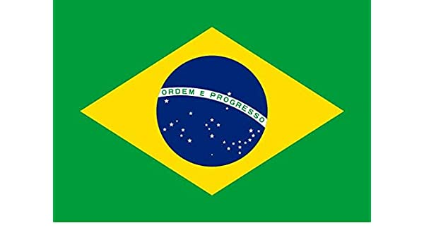 Q&J Bandera Oficial de Brasil - Medidas 150 x 90 cm. - Polyester 100% - para Exterior e Interior: Amazon.es: Jardín