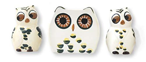 ACK Tuscany Cute Green Owl, Ceramic Kitchen, Napkin Holder, Salt & Pepper Set, (Best Ack Napkin Holders)