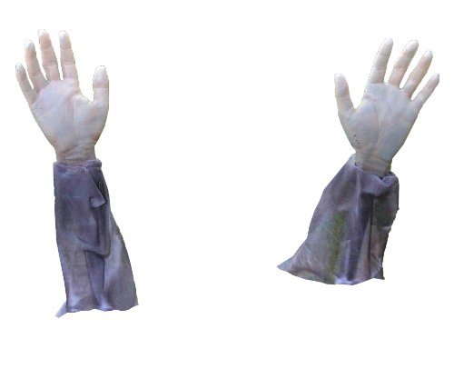 Outdoor Halloween Decorations (Forum Novelties Zombie Hands & Arms - (2) Zombie Lawn Stakes)