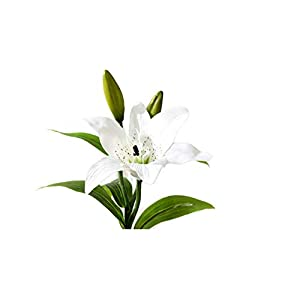 N YONGNUO Real Touch Flowers White Lily Artificial Flowers Silk Flowers for Party Anniversary Festival Environment Beautify Wedding Bouquet House Decorations Use(White Lily) 35
