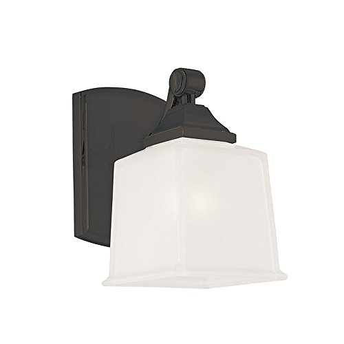 Lakeland One Light Wall - Lakeland 1-Light Vanity Light - Old Bronze Finish with Clear/Frosted Glass Shade