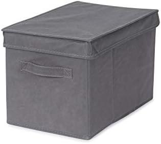 Store & Style - Caja de almacenaje con tapa, 25 x 20 x 40 cm (gris): Amazon.es: Hogar