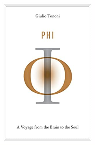 Phi A Voyage From The Brain To The Soul Amazon Giulio