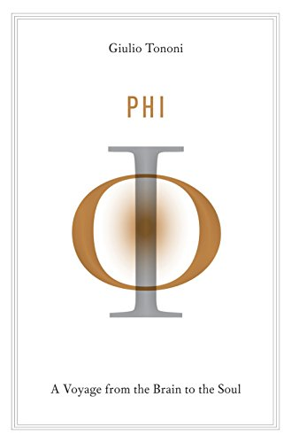 Drive Medical Designer Series - Phi: A Voyage from the Brain to the Soul