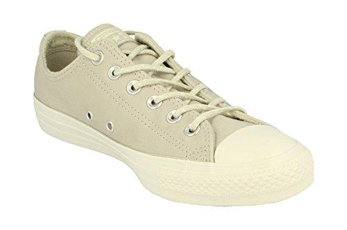 Converse Light Deportivo Para Calzado Marca Gris Gris Hombre Modelo Ctas Ox Surplus Color Converse 157584c Hombre gYxdOw