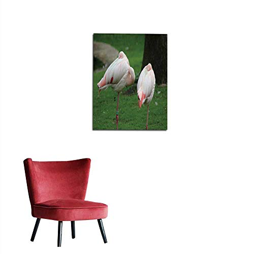 longbuyer Photo Wall Paper The Greater Flamingo (Phoenicopterus roseus) Mural 32