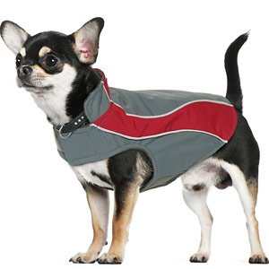 Kakadu Pet Explorer Nylon Fleece Reflective Dog Coat, 10″, Flame (Red), My Pet Supplies