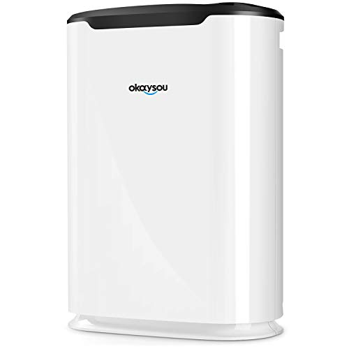 Okaysou Airmax8l Medical Grade Ultra Duo Air Purifier For Pets Smokers Odors 5 In 1 Large Room Air Cleaner True Hepa Filter Eliminates Pet Hair Smoke Dust Pollen Vocs 500 Sq Ft White
