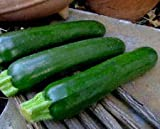 buy 20 Black Beauty Zucchini (Summer Squash) Courgette Seeds Non-GMO 2.83 Grams now, new 2019-2018 bestseller, review and Photo, best price $8.00