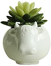 Ucoolbila Animal Ceramic Flowerpot White Porcelain Succulent Plants Flower Pot Home Decro Garden Vase Desktop Mini Ornaments
