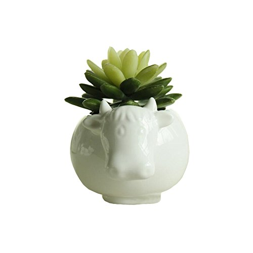 Youfui Cute Succulent Planter Animal Shaped Flower Pot Decor for Home Office Desk (Cow)