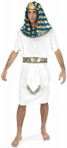 Rubies 90245 disfraz de egipcio m gallinas de guinea corto: Amazon ...