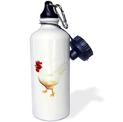 3dRose Boehm Graphics Birds - Leghorn Rooster - 21 oz Sports Water Bottle -
