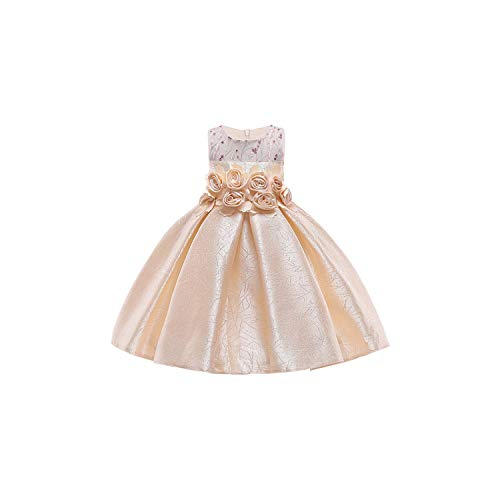 (Girl Costumetoddler Tutu Flower Party Prom Pageant Wedding Evening 3 4 5 6 7 8 9 10 Years,Champagne,3T)
