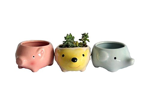 (Youfui Cute Animal Succulent Planter Flower Pot Decor for Home Office Desk (Pig+Elephant+Hedgehog))