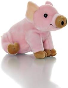 Amazon.com: Aromaterapia Pig Animal de peluche terapia de ...