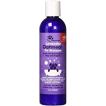 Amazon Com Colloidal Oatmeal Dog Shampoo With Pure Lavender