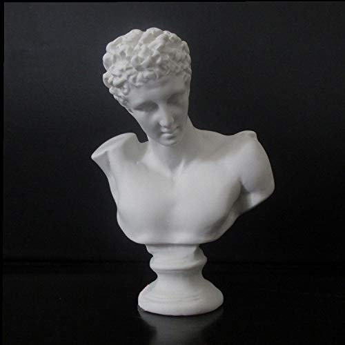 Hermes Bust Statue - VAXMON Mini Hermes Head Statue Head and Bust Sculpture Resin Figurine Home Decor Sketch Ornaments 2.7