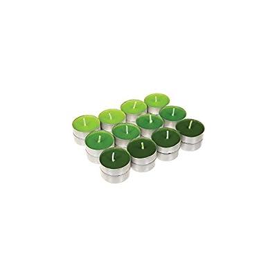 24 bougies parfumées - 3,7 x 1,2 cm - Cire - Vert
