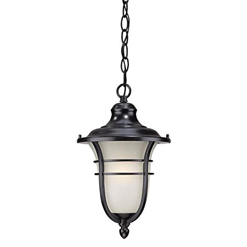 Acclaim 3666BK Montclair Collection 1-Light Outdoor Light Fixture Hanging Lantern, Matte Black