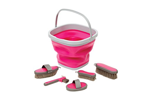 Roma Silicone Grooming Bucket Kit (light - Roma Grooming