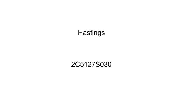 Hastings 2C5663S030 Single Cylinder Piston Ring Set