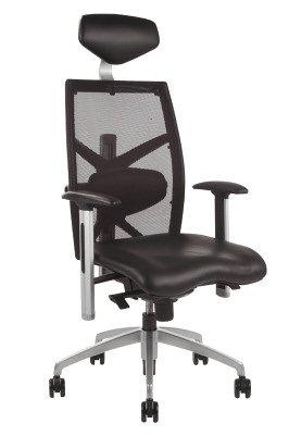 Chellgrove DPA EXACT Ergonomic Mesh Office Chair