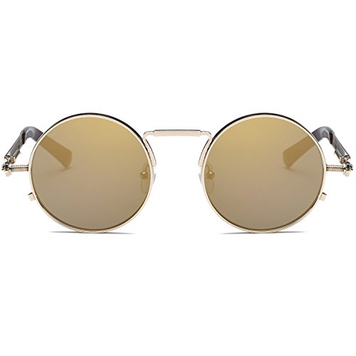 Ray Parker Gothic Round Metal Frame with Mirrored Lenses for Men Sunglasses RP6634 with Gold Frame/Gold Lenses
