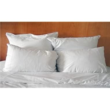 Set of Two Hypoallergenic Microfiber Pillows (Standard)