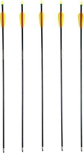 6 Stück hochwertige G8DS® Bogensport Pfeile 30