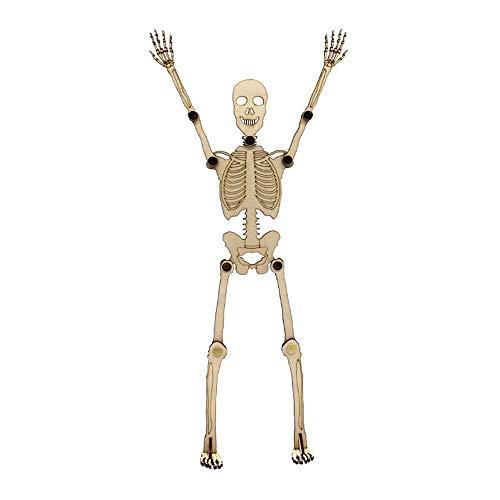Ktyssp Halloween Movable Joint Skeleton Skull Bones Prop Decor -