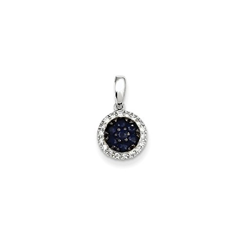 ICE CARATS 14k White Gold Diamond Sapphire Circle Pendant Charm Necklace Gemstone Fine Jewelry Ideal Mothers Day Gifts For Mom Women Gift Set From (Sapphire Heart Circle Pendant)